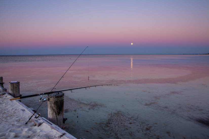Photo Voyages : Voyage - Australie #1
