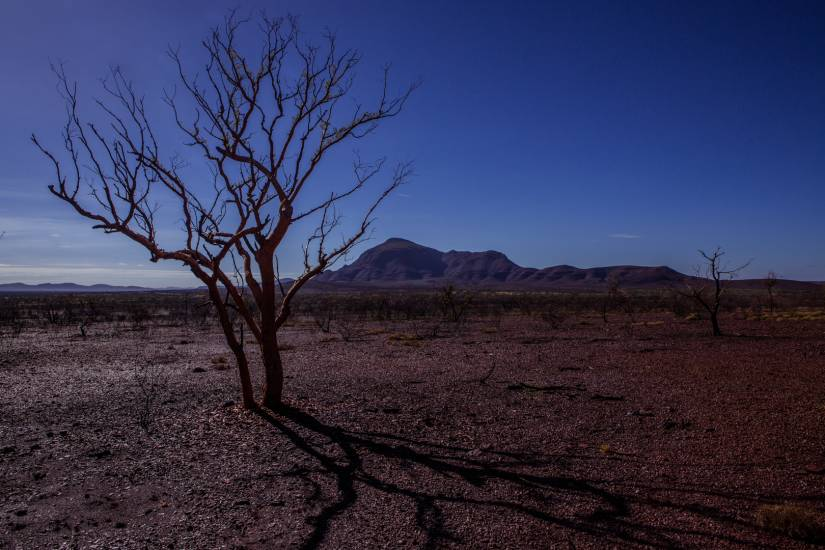Photo Voyages : Voyage - Australie #31