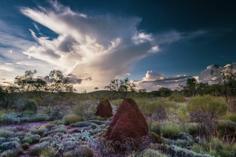Photo Voyages : Voyage - Australie #37