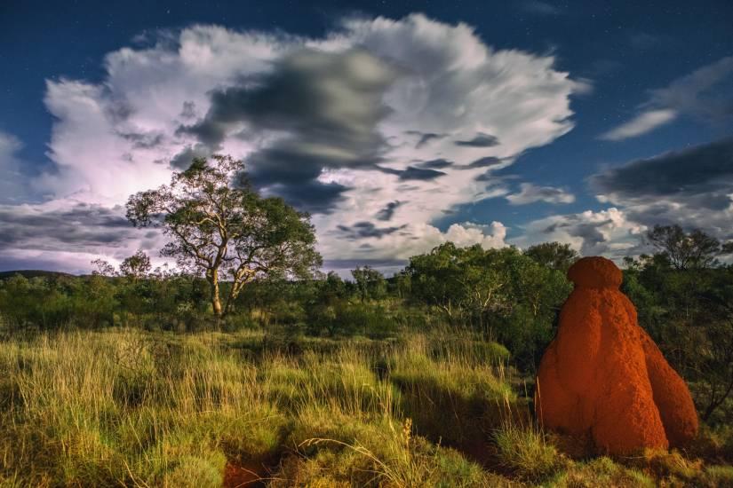 Photo Voyages : Voyage - Australie #38