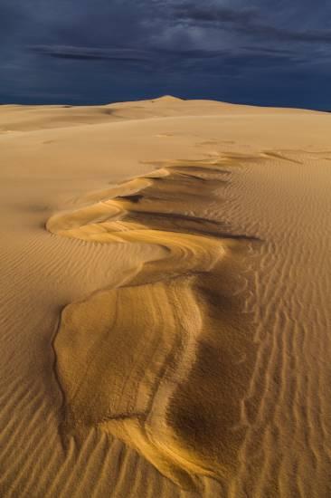 Photo Bassin d'Arcachon : Bassin d'Arcachon - Dune du Pilat #5