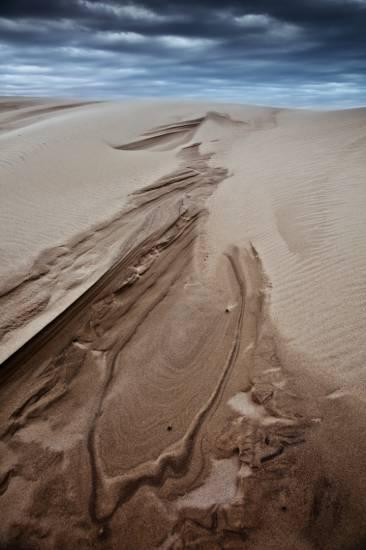 Photo Bassin d'Arcachon : Bassin d'Arcachon - Dune du Pilat #8