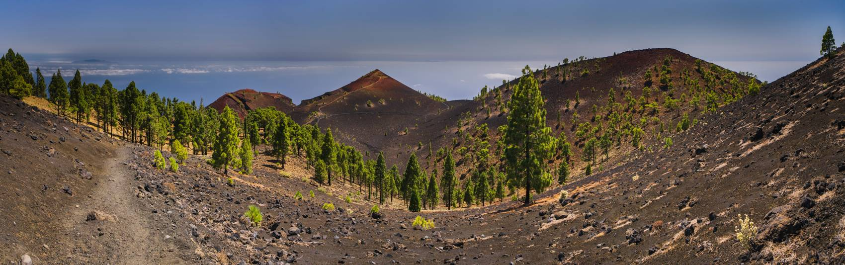 Photo Voyages : Îles Canaries #17