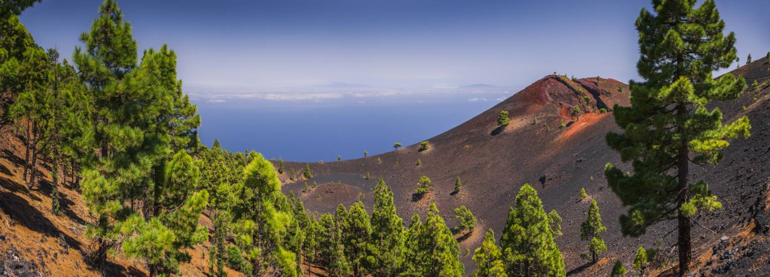 Photo Voyages : Îles Canaries #18