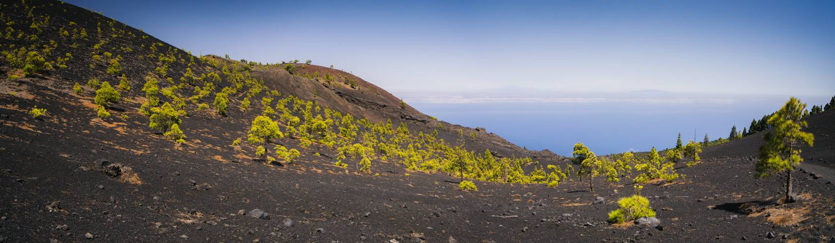 Photo Voyages : Îles Canaries #20
