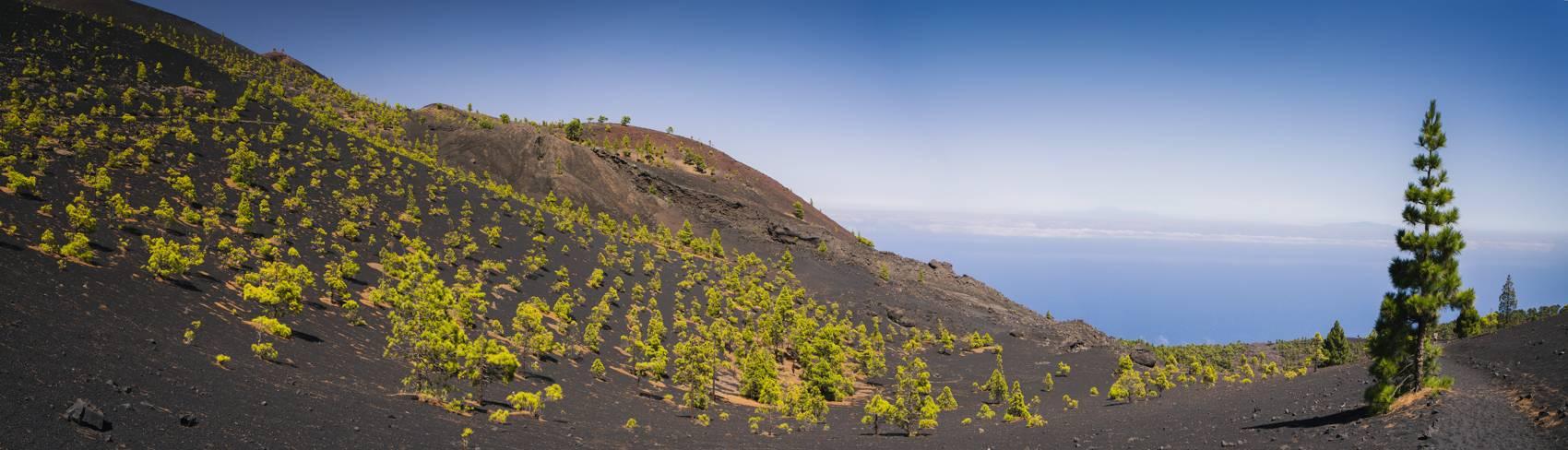 Photo Voyages : Îles Canaries #21