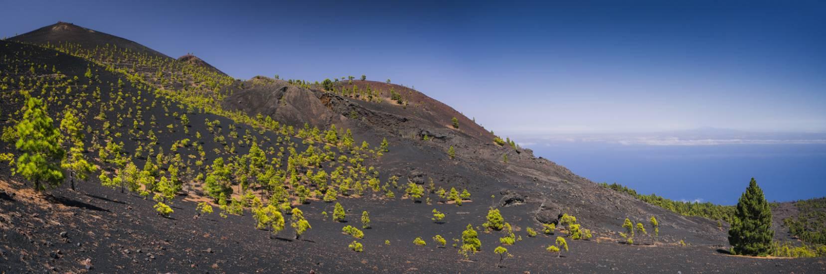 Photo Voyages : Îles Canaries #22