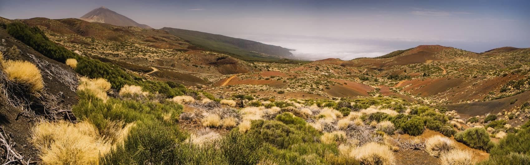 Photo Voyages : Îles Canaries #30